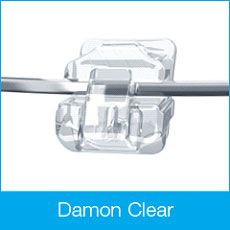 damon-clear